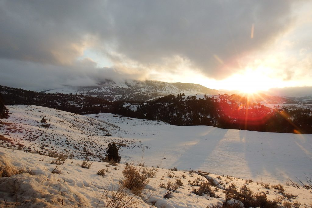 Winter dawn in Yellowstone