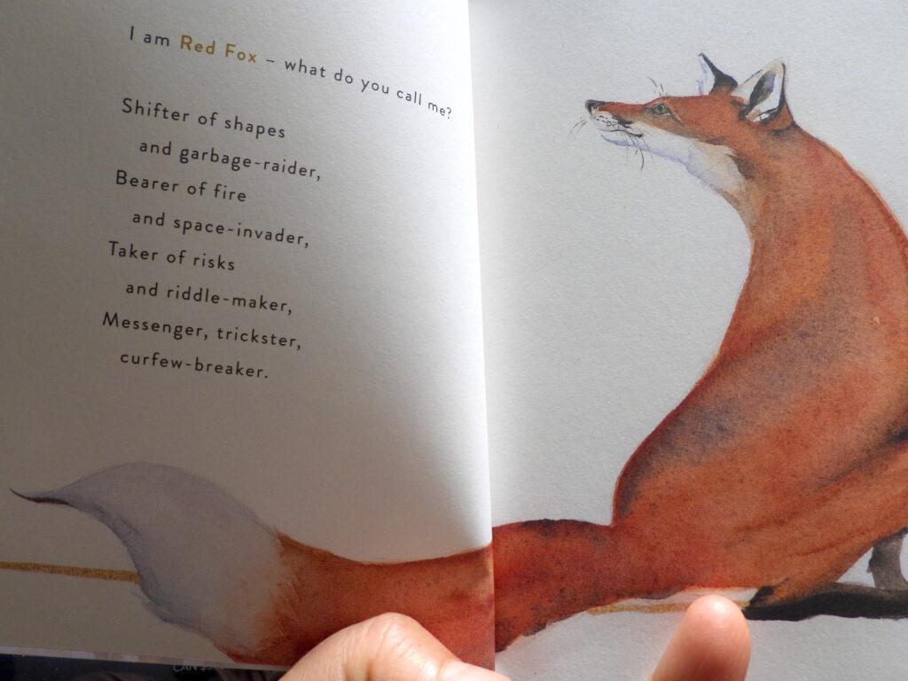 Red Fox poem